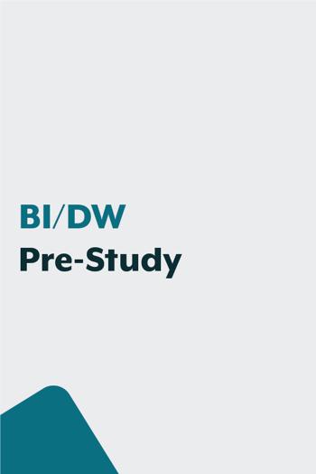 BI-DW_Prestudy