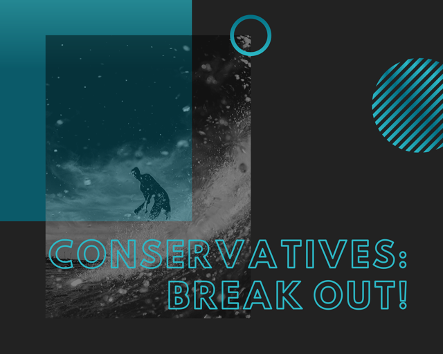 Being a conservative is a type of business that is strong on leadership, but weaker on digital capacities.