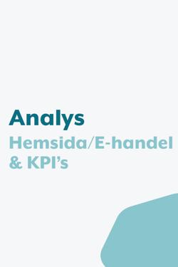 analys hemsida-8